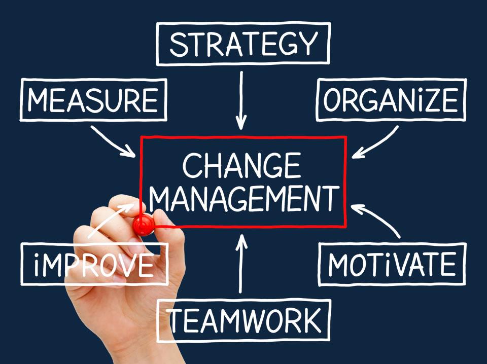 Change management » Consultus
